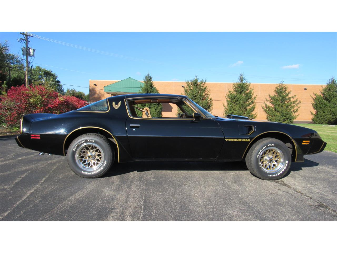 Large Picture of '79 Pontiac Firebird Trans Am located in Ohio Offered by Cincy Classic Cars - M8TS