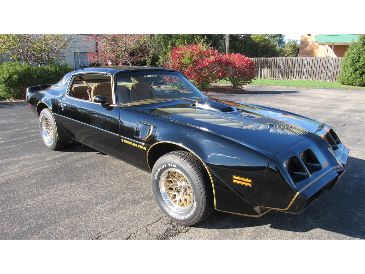 Large Picture of '79 Pontiac Firebird Trans Am located in Milford Ohio - $39,900.00 - M8TS