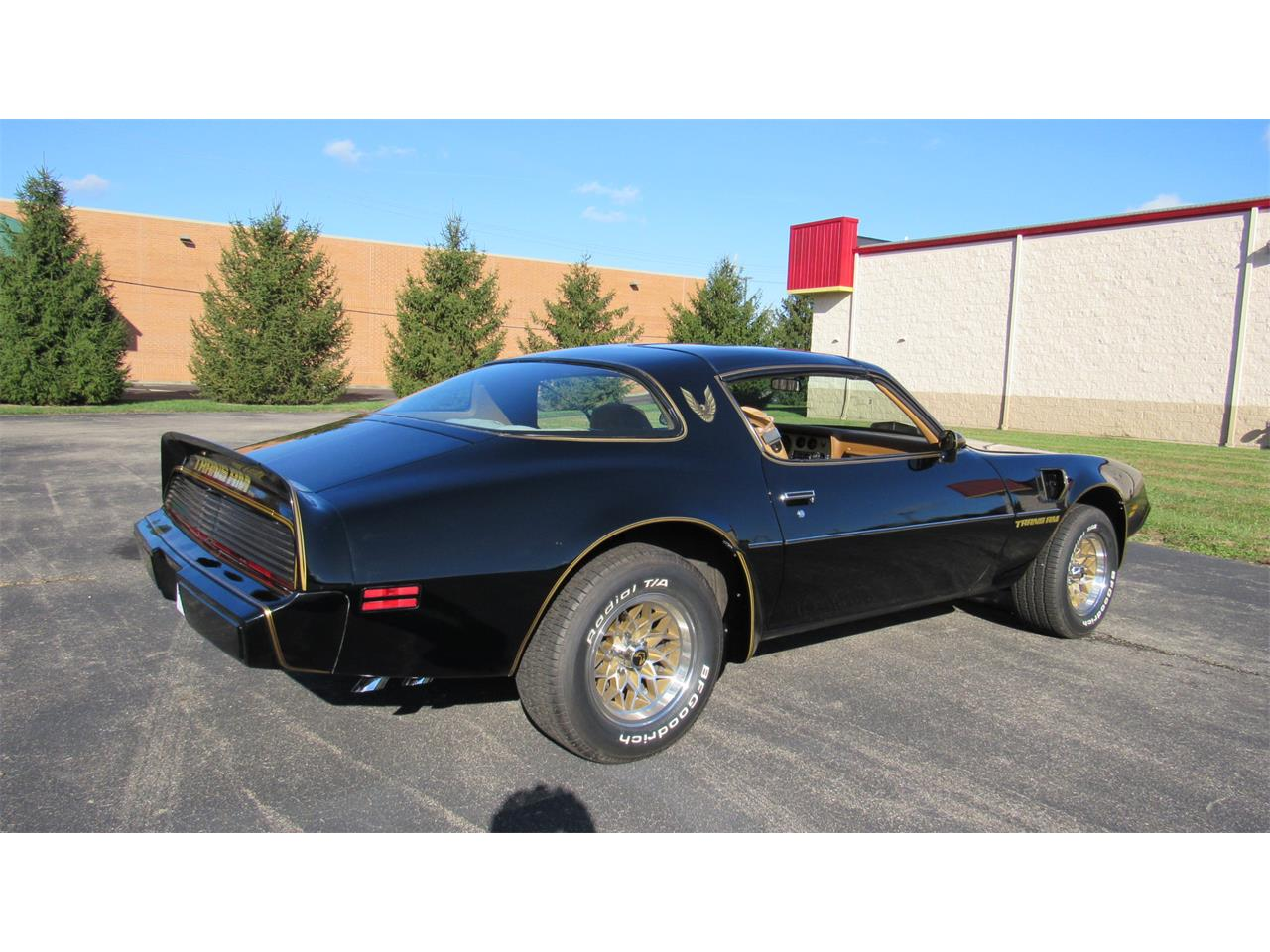 Large Picture of '79 Firebird Trans Am located in Ohio Offered by Cincy Classic Cars - M8TS