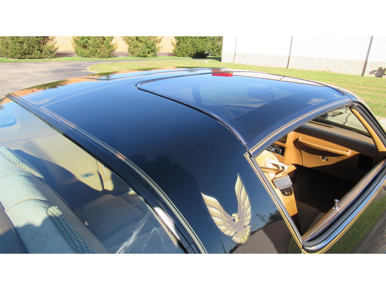 Large Picture of '79 Firebird Trans Am located in Milford Ohio - $39,900.00 - M8TS