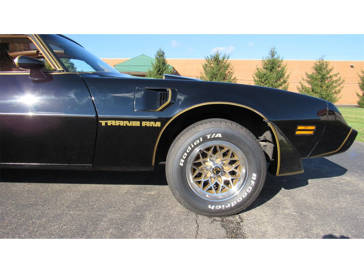 Large Picture of 1979 Pontiac Firebird Trans Am located in Milford Ohio Offered by Cincy Classic Cars - M8TS