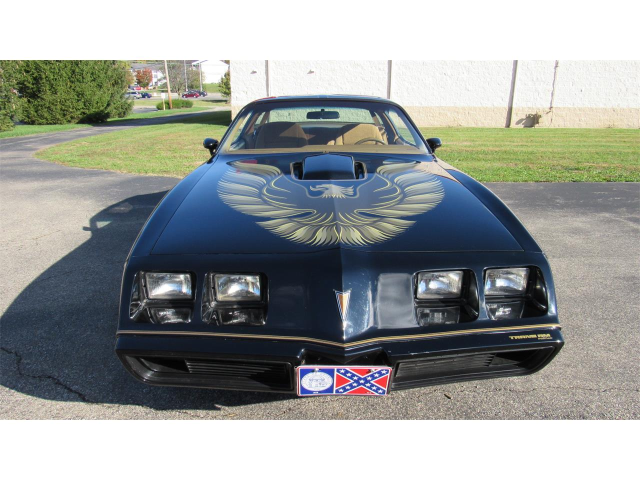 Large Picture of 1979 Firebird Trans Am located in Milford Ohio - M8TS