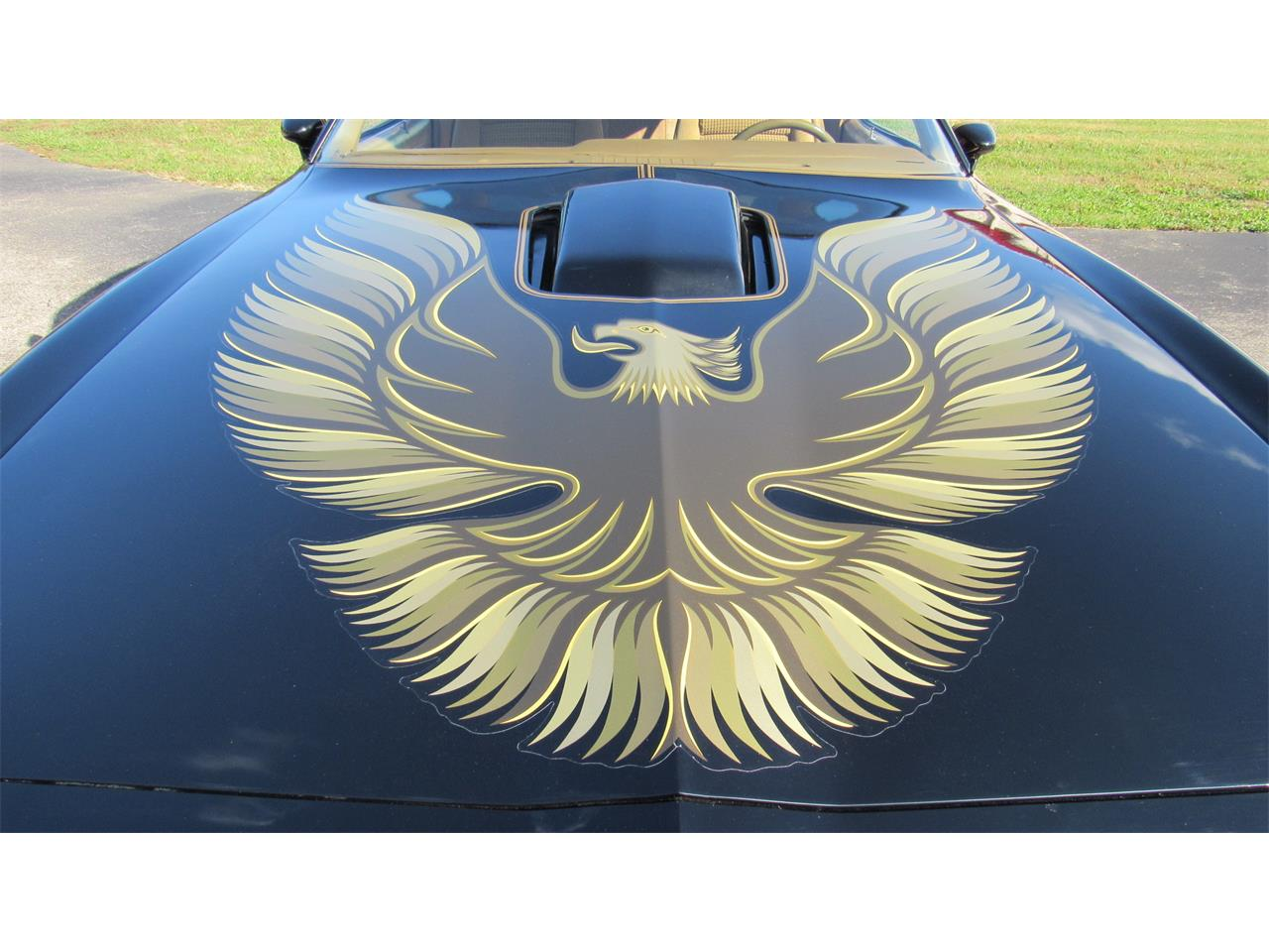 Large Picture of 1979 Firebird Trans Am located in Milford Ohio Offered by Cincy Classic Cars - M8TS