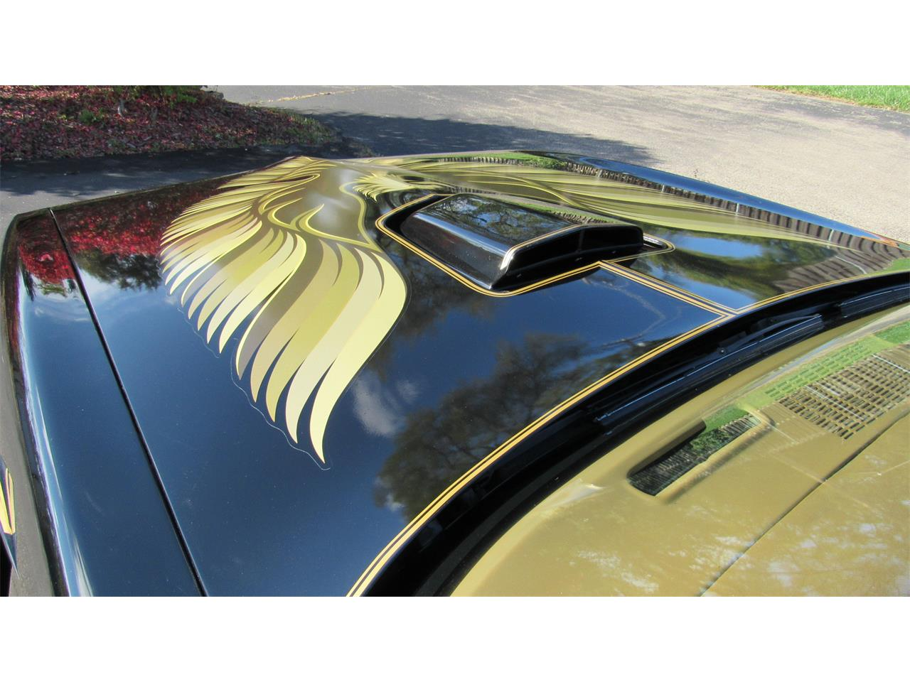 Large Picture of '79 Pontiac Firebird Trans Am - M8TS