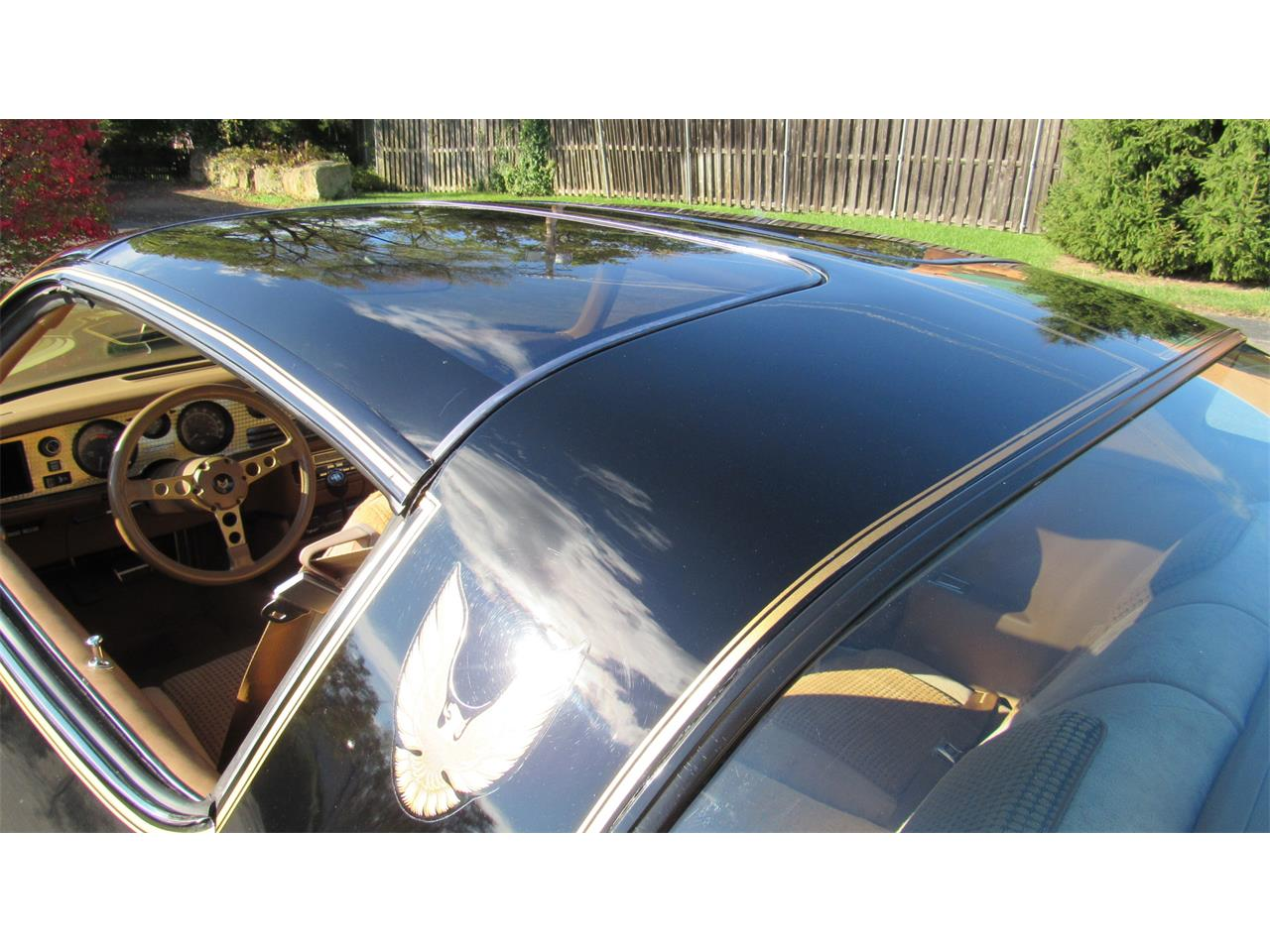 Large Picture of '79 Firebird Trans Am located in Milford Ohio Offered by Cincy Classic Cars - M8TS