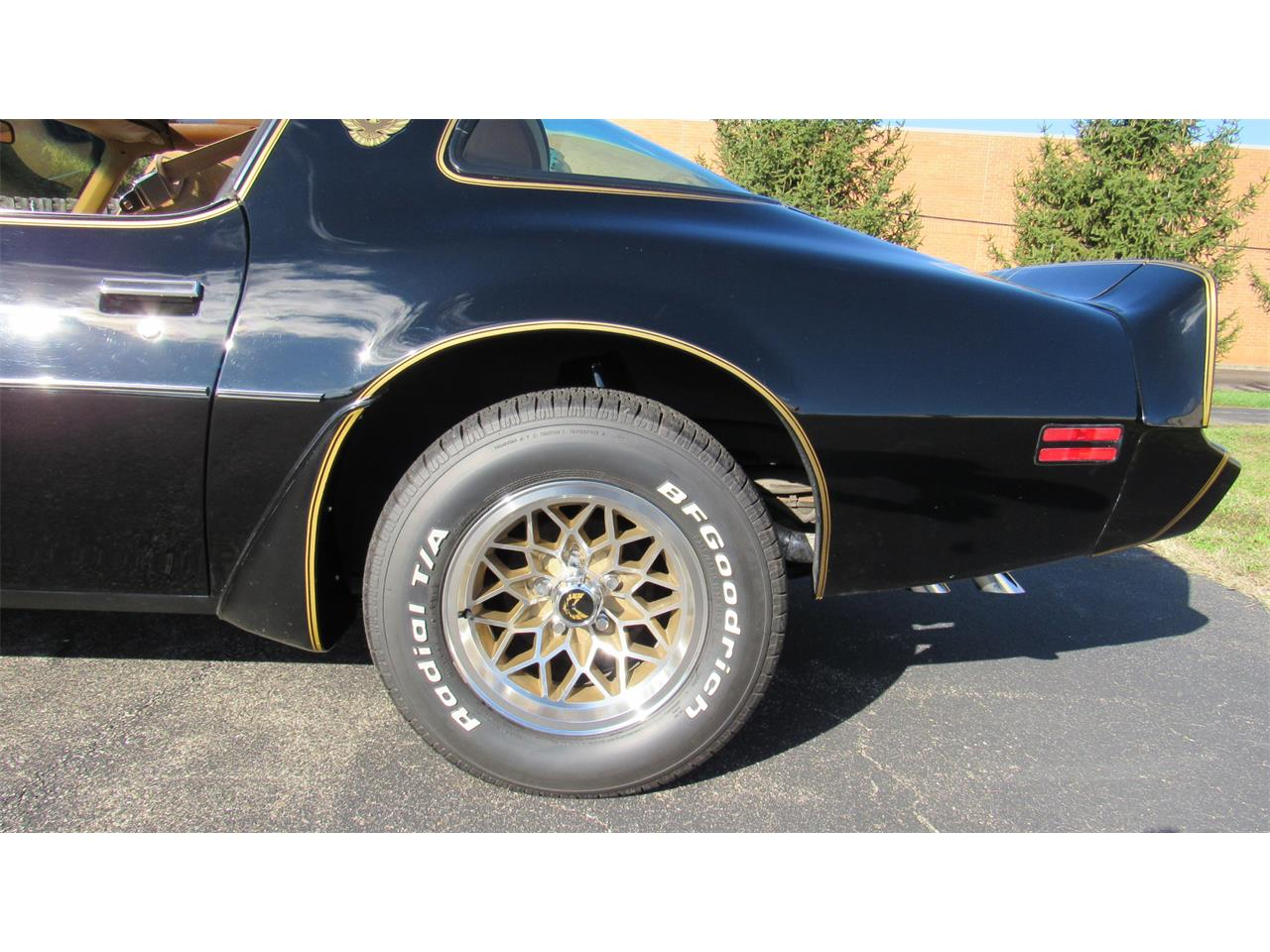 Large Picture of 1979 Pontiac Firebird Trans Am - $39,900.00 Offered by Cincy Classic Cars - M8TS
