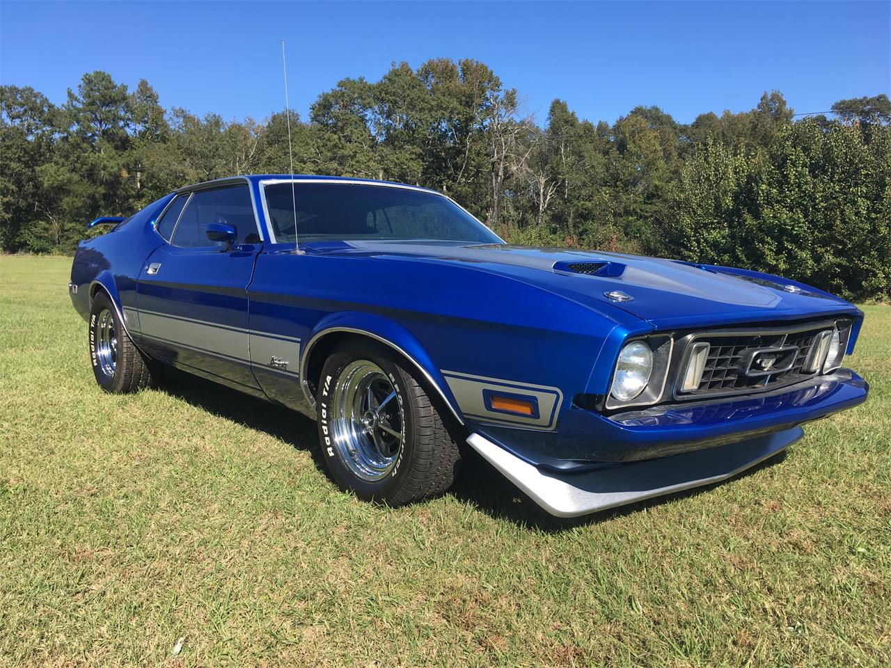 Large Picture of '73 Ford Mustang Mach 1 located in Phenix City Alabama Offered by a Private Seller - M9HX