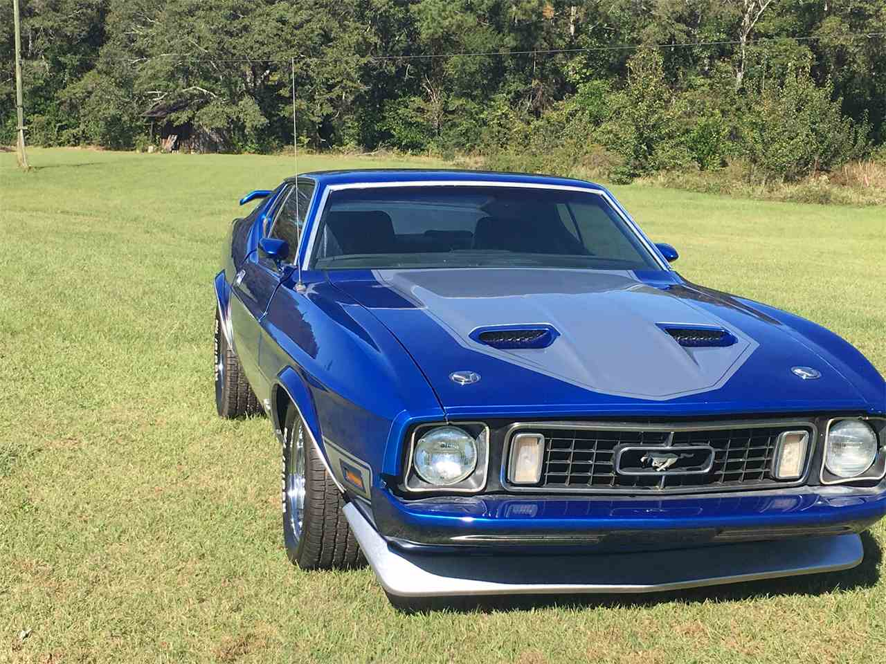 Large Picture of '73 Mustang Mach 1 - M9HX