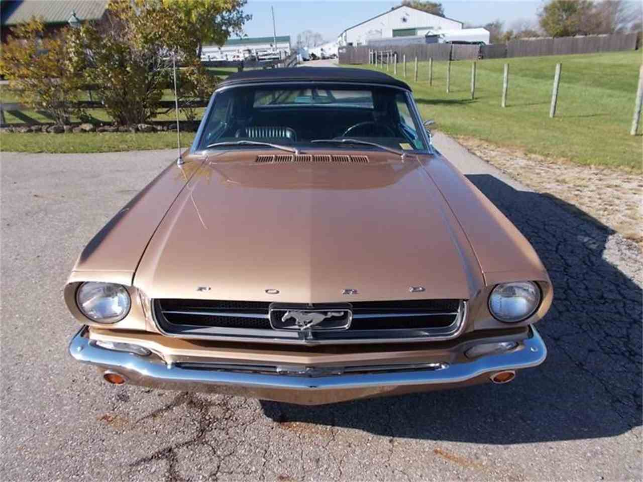 Large Picture of Classic '65 Mustang located in Indiana Offered by 500 Classic Auto Sales - M9W1