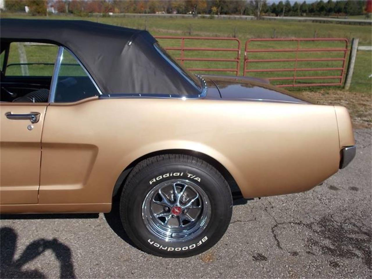 Large Picture of '65 Mustang - M9W1