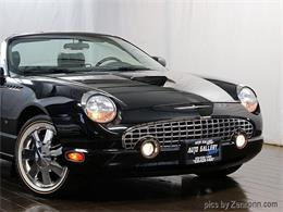 Picture of '02 Thunderbird - M9ZK