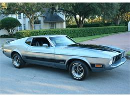 Picture of '73 Mustang located in Lakeland Florida - MA11