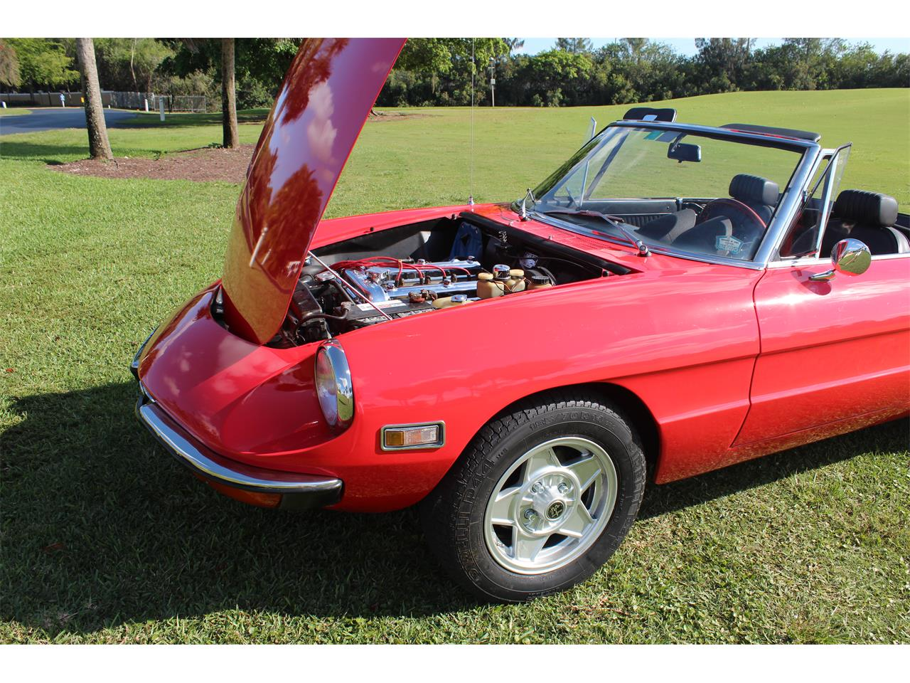 Large Picture of '71 Alfa Romeo Spider - $25,000.00 Offered by a Private Seller - MA2U