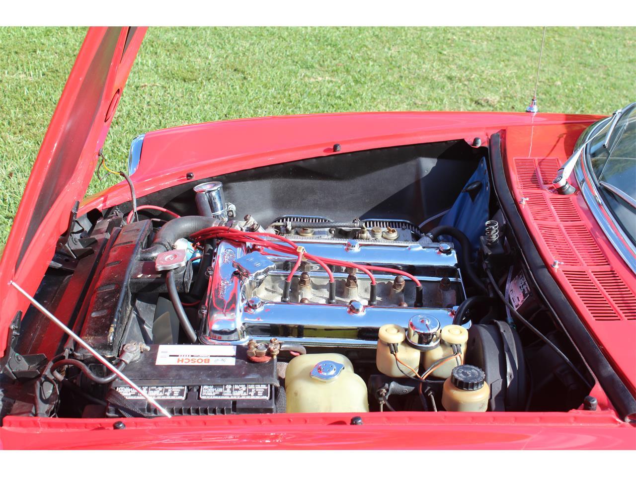 Large Picture of Classic 1971 Alfa Romeo Spider located in Miami Florida - $25,000.00 - MA2U