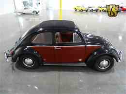 Picture of '63 Beetle - M3I2