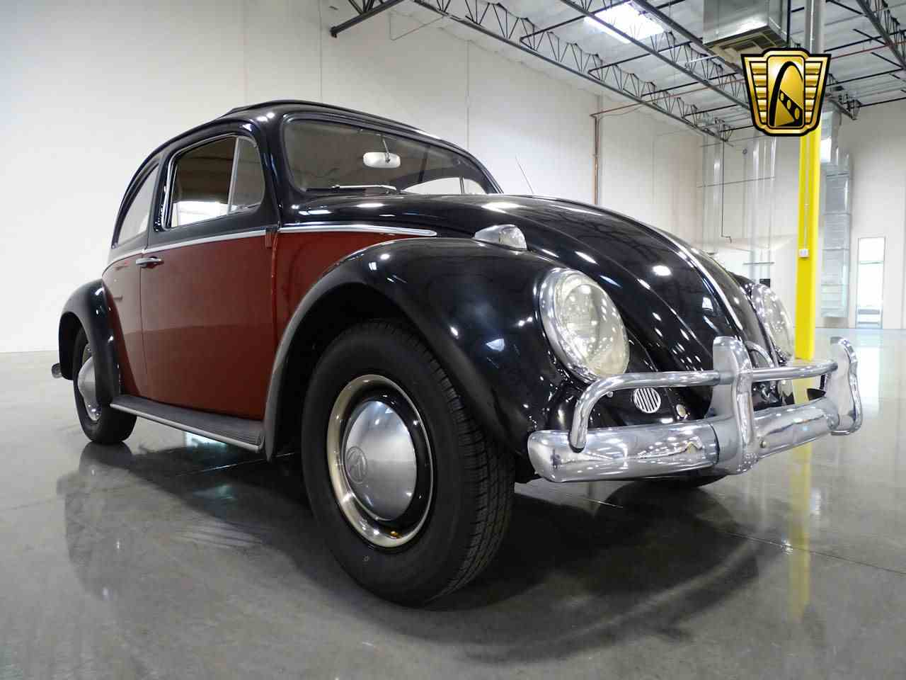 Large Picture of '63 Beetle - M3I2