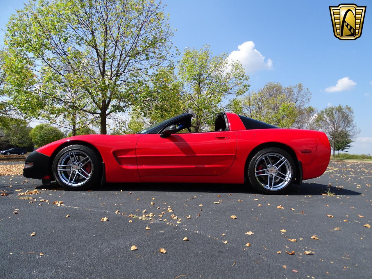 Large Picture of '99 Corvette - MACO