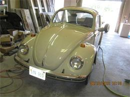 Picture of '69 Beetle - MBKU