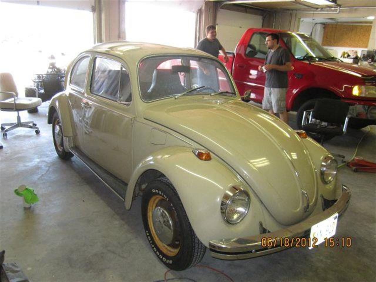 Large Picture of '69 Beetle - MBKU