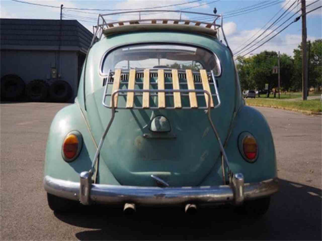 Large Picture of '62 Beetle - MBMB