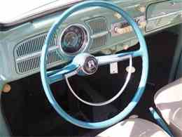 Picture of '61 Beetle - MBMH
