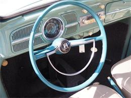 Picture of Classic '61 Beetle - $19,999.00 Offered by Cincinnati Auto Wholesale - MBMH