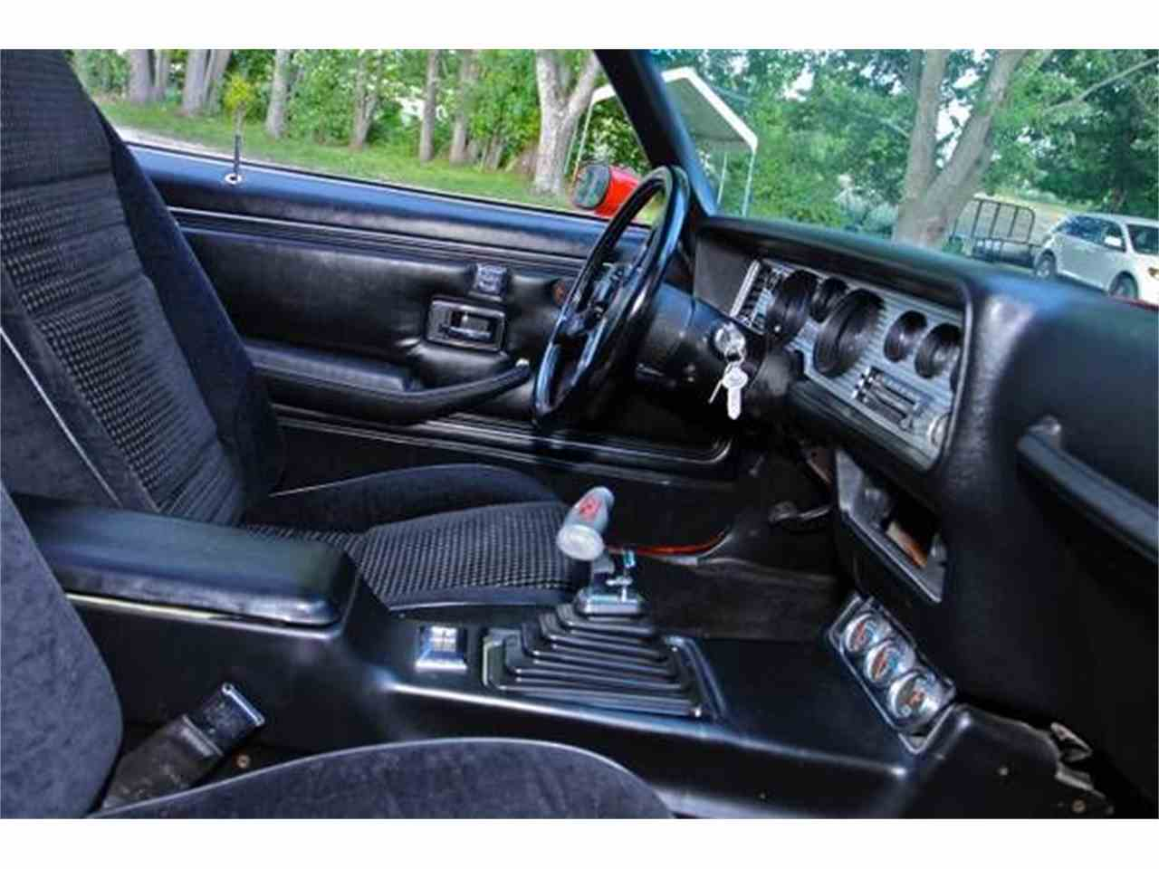 Large Picture of '81 Firebird Trans Am - MALK