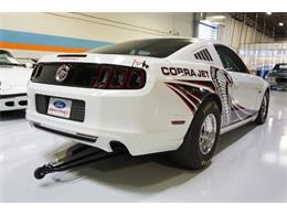 Picture of '14 Ford Mustang - $99,000.00 Offered by R&H Motor Car Group - MC66