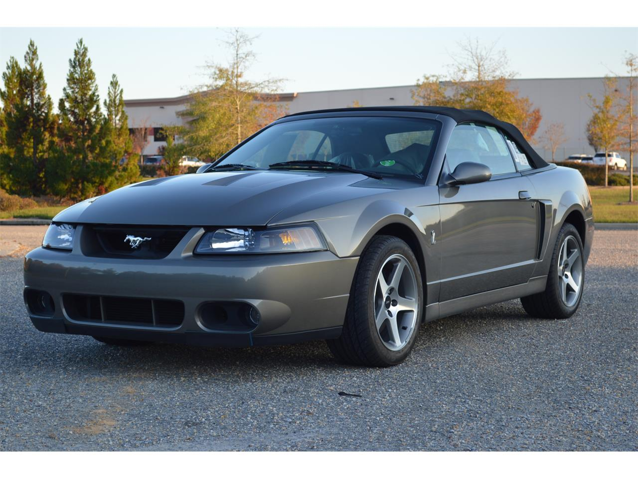 Large picture of 03 mustang cobra located in alabaster alabama 34900 00 offered by leaded