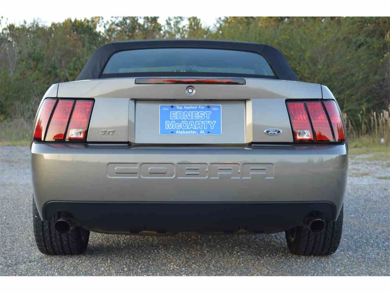 Large Picture of '03 Mustang Cobra - MCE2