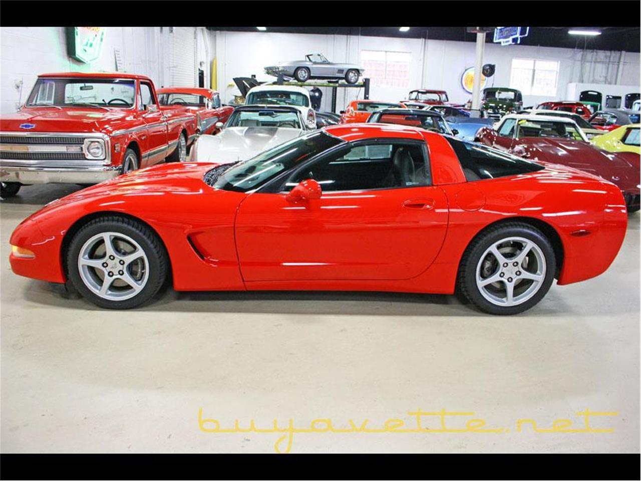 Large Picture of '03 Corvette - MDND