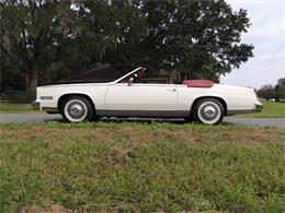 Picture of 1985 Cadillac Eldorado Biarritz located in Land O Lakes Florida - MDP6