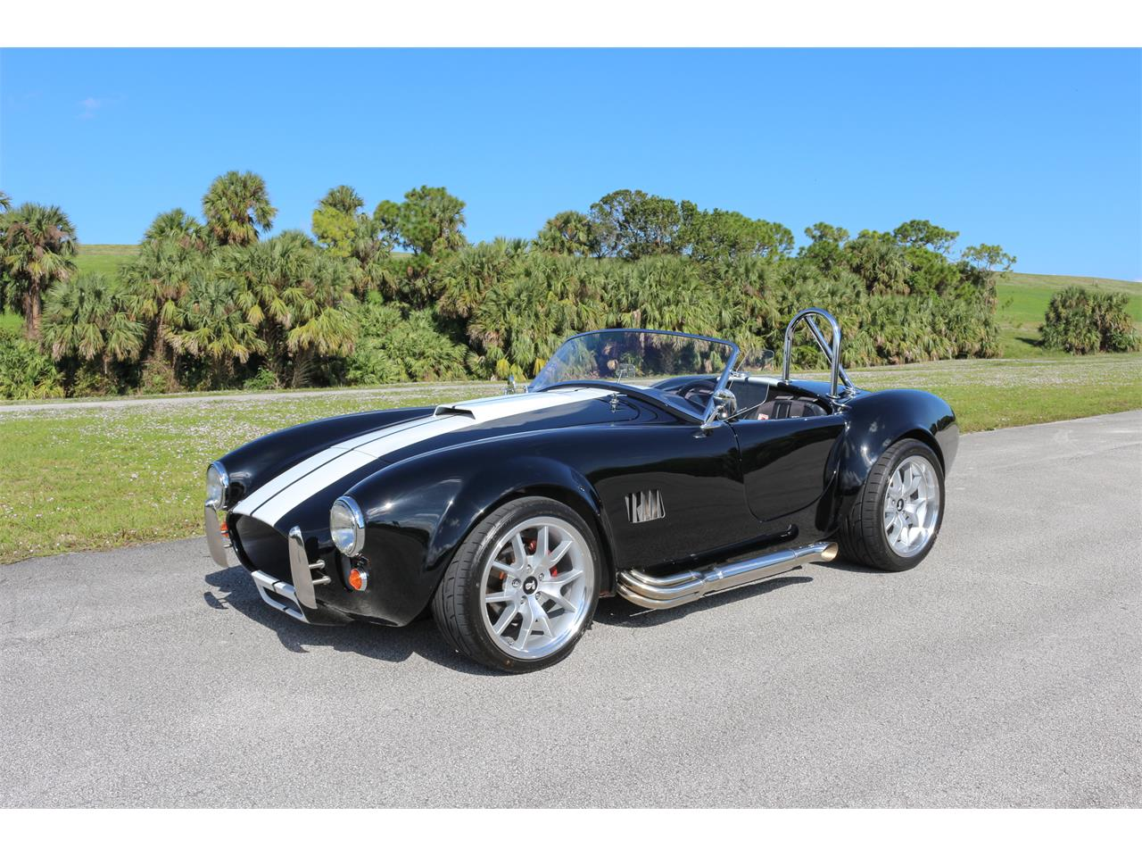 Large Picture of Classic '65 Cobra located in Riviera Beach Florida Offered by a Private Seller - MDPC