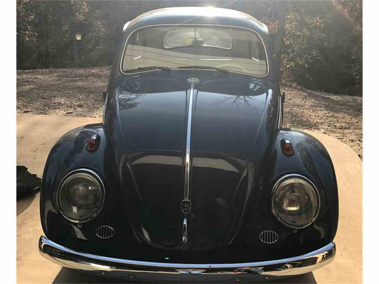 Large Picture of '60 Beetle - MDZK