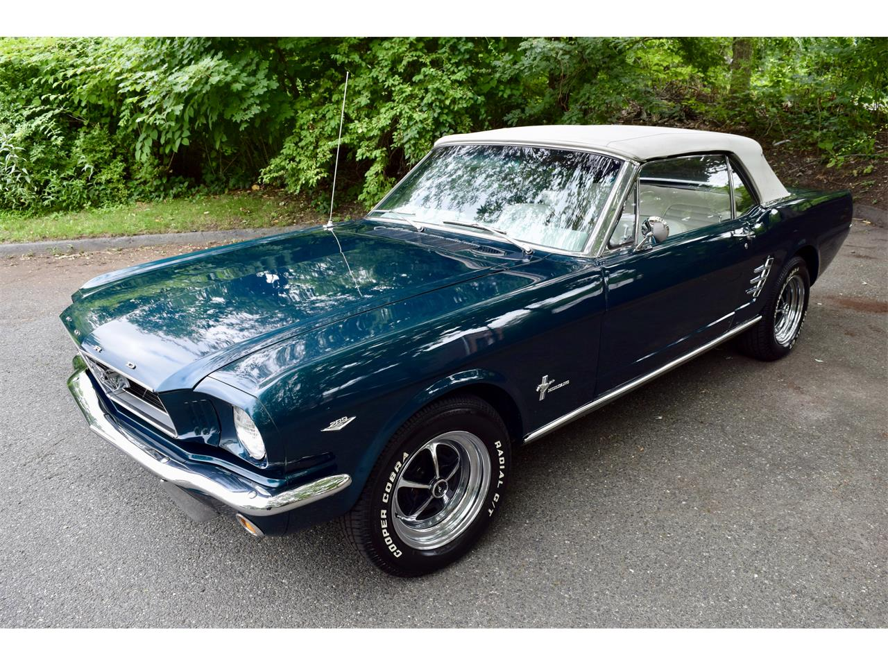 Large Picture of '66 Mustang - MEAL