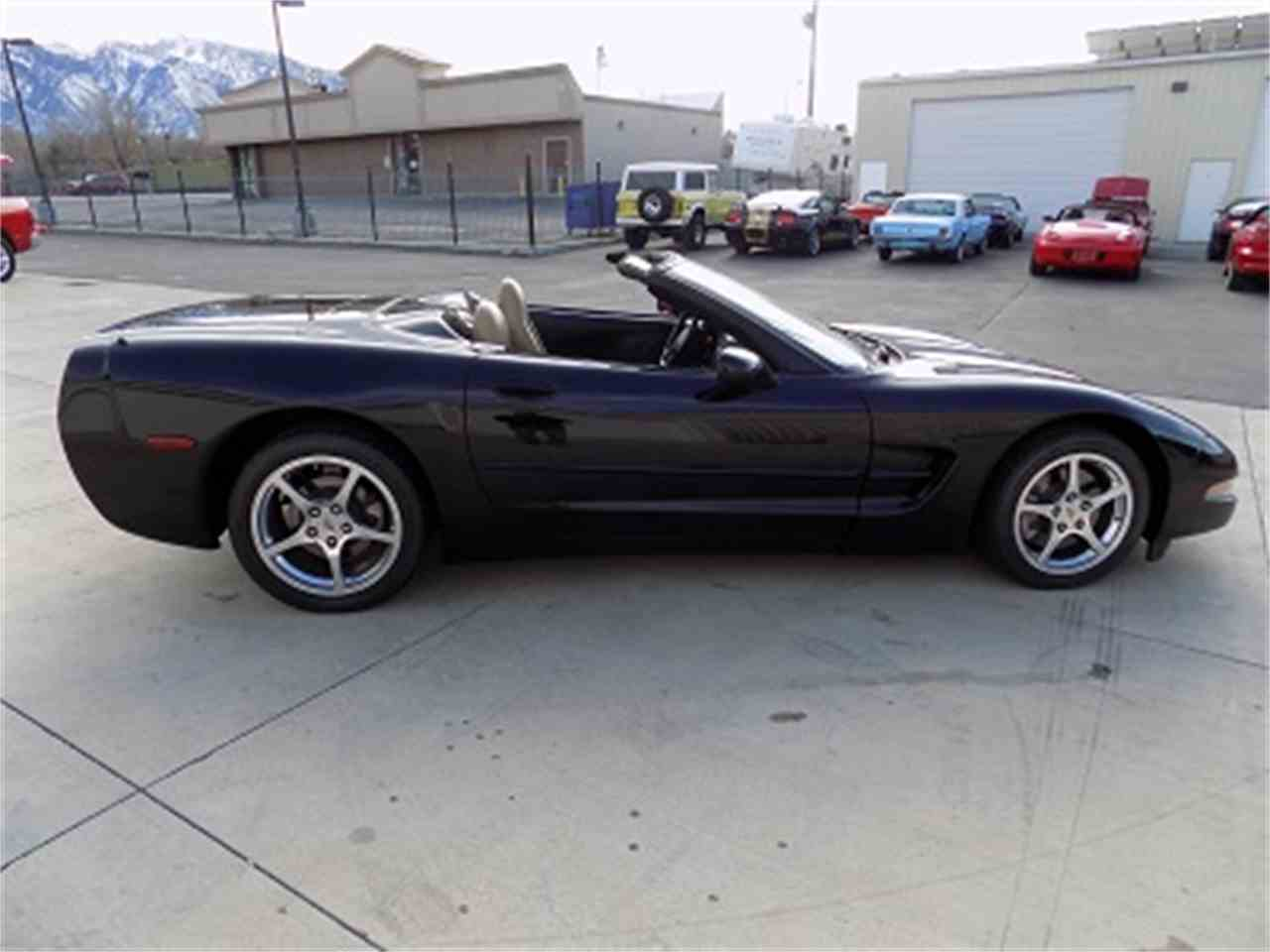Large Picture of '04 Corvette - MED2