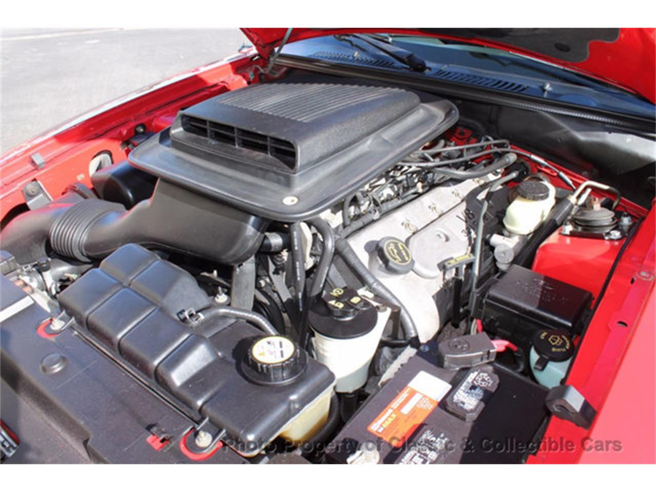 Large Picture of 2004 Ford Mustang Offered by Classic and Collectible Cars - MAVX