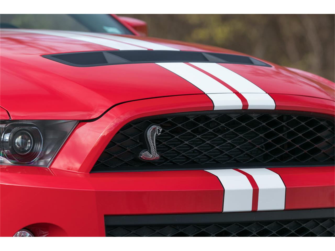 Large Picture of '11 Mustang - MFEZ