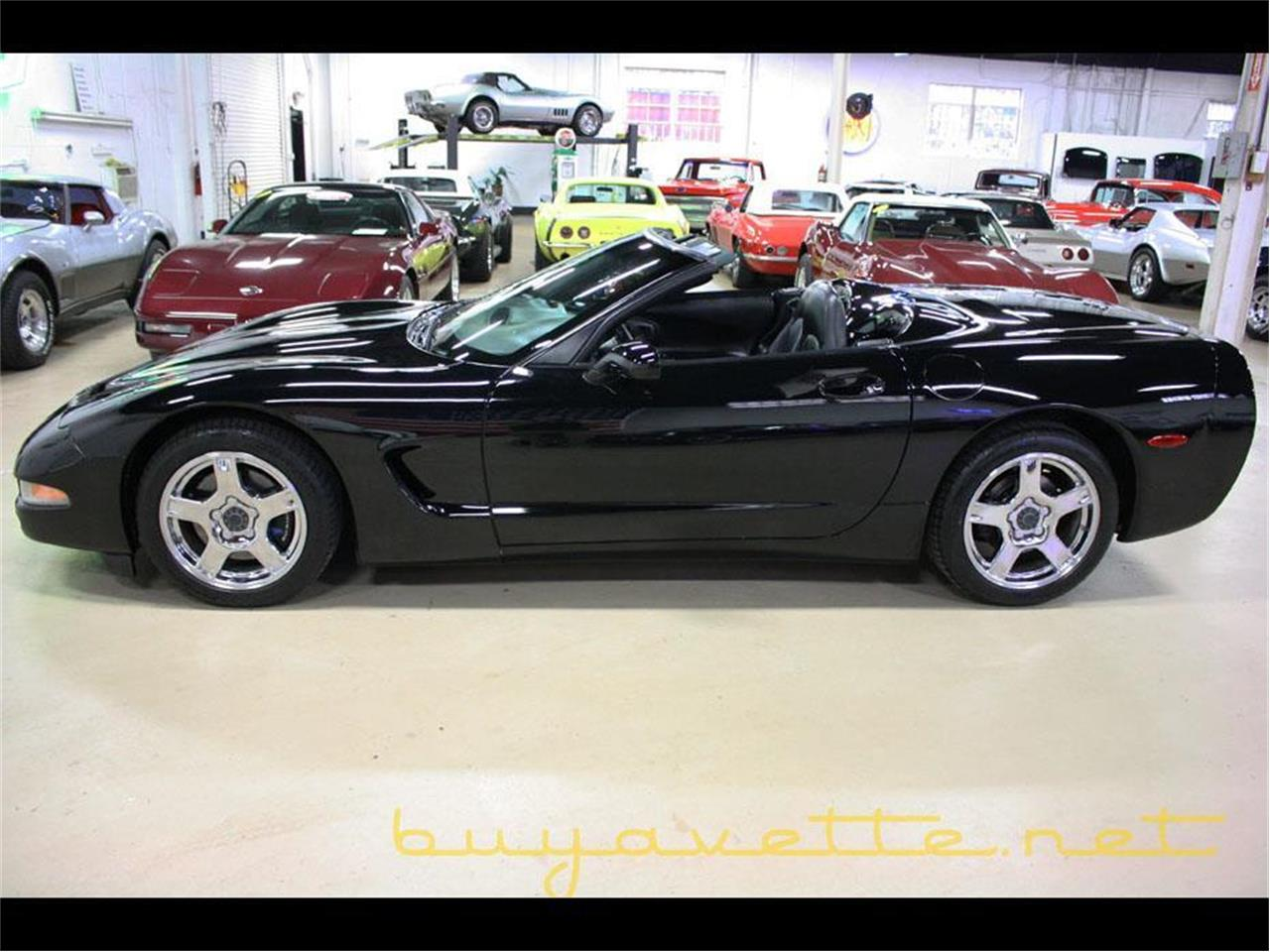 Large Picture of '98 Corvette - MAYU