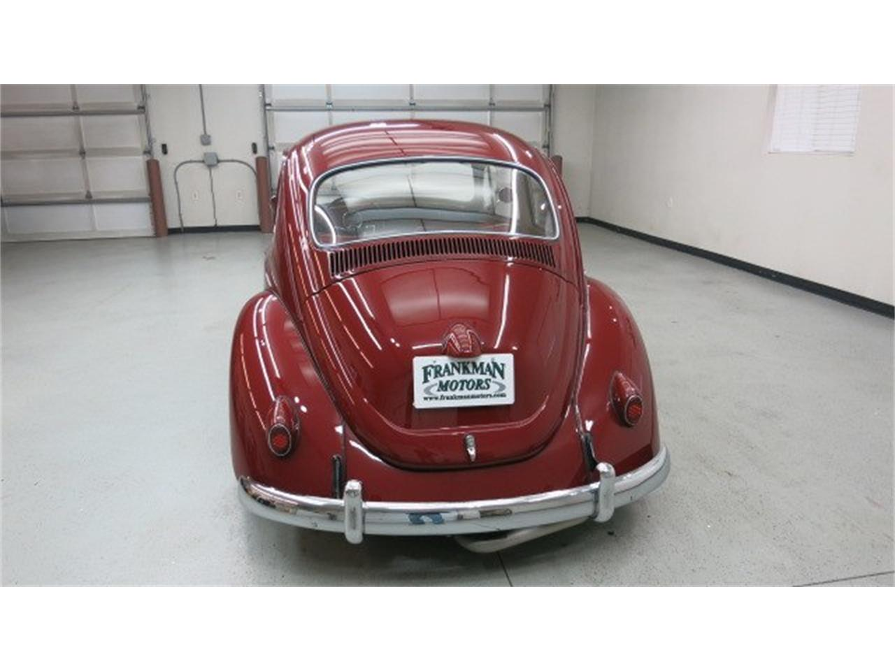 Large Picture of '69 Beetle - MAZ8