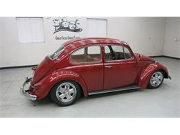 Picture of '69 Beetle - MAZ8