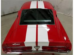 Picture of '67 GT500 - MFLG
