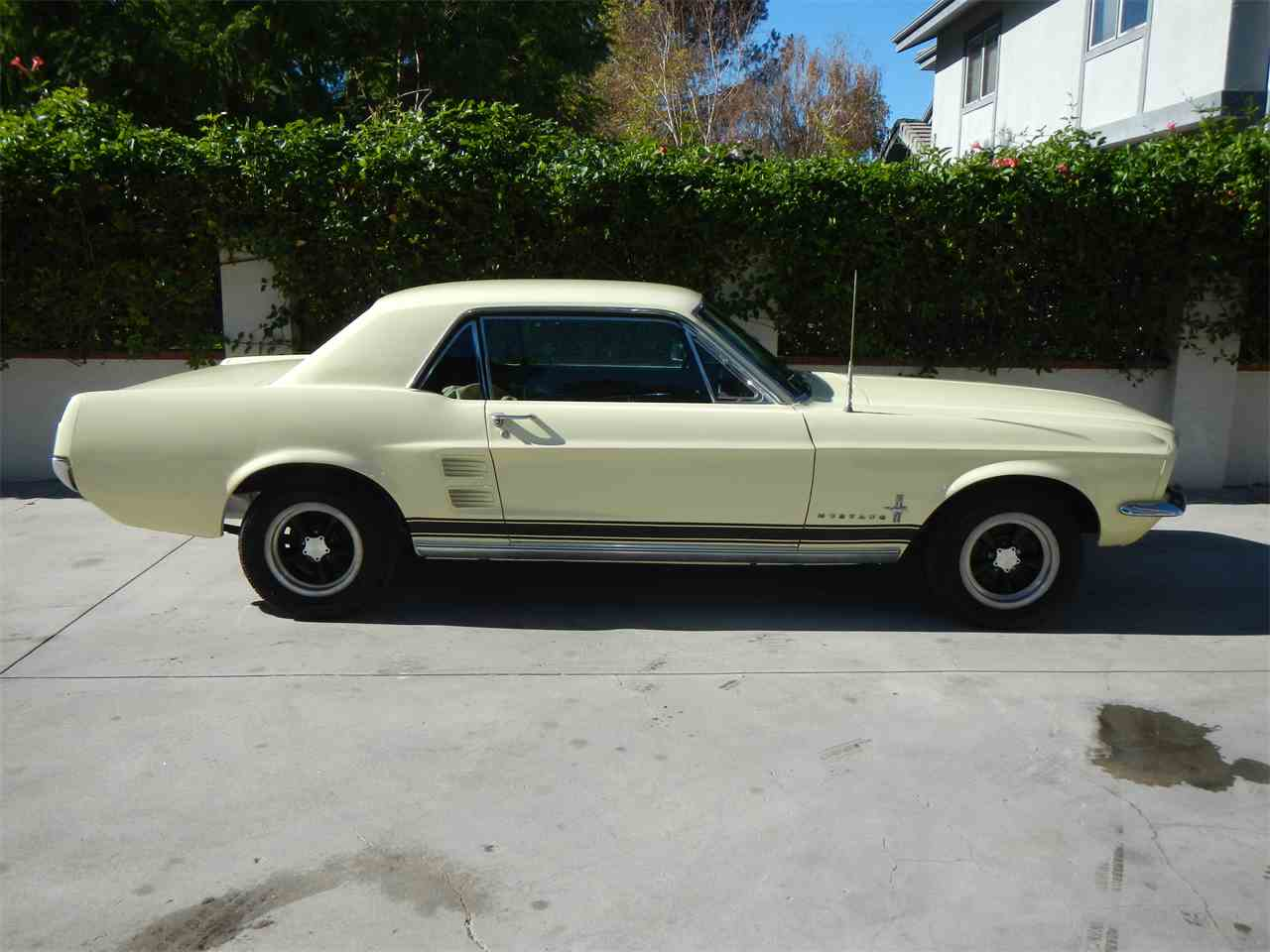Large Picture of '66 Mustang - MFM6
