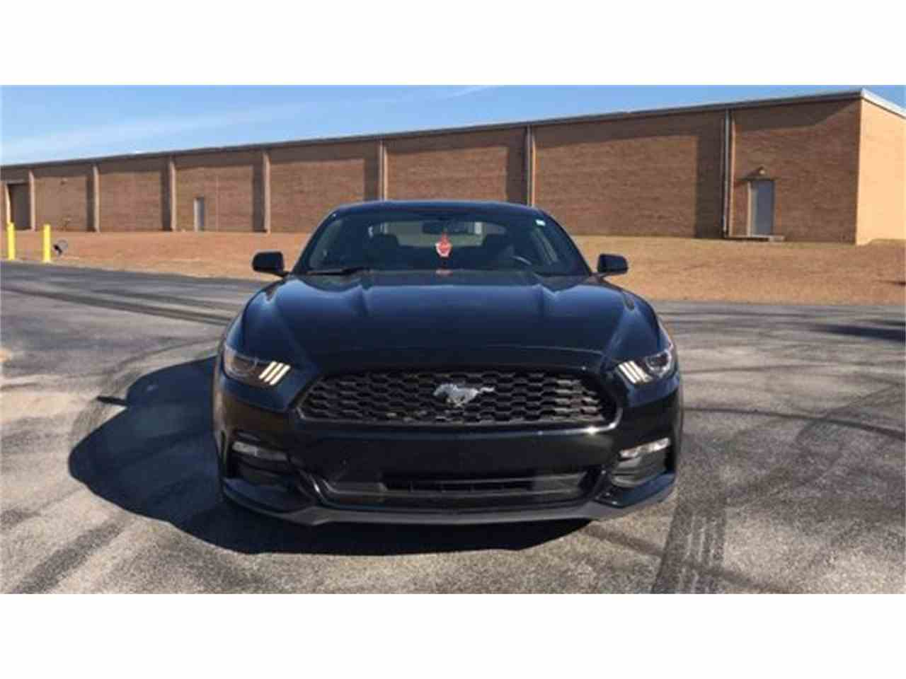 Large Picture of '16 Mustang - MFZO
