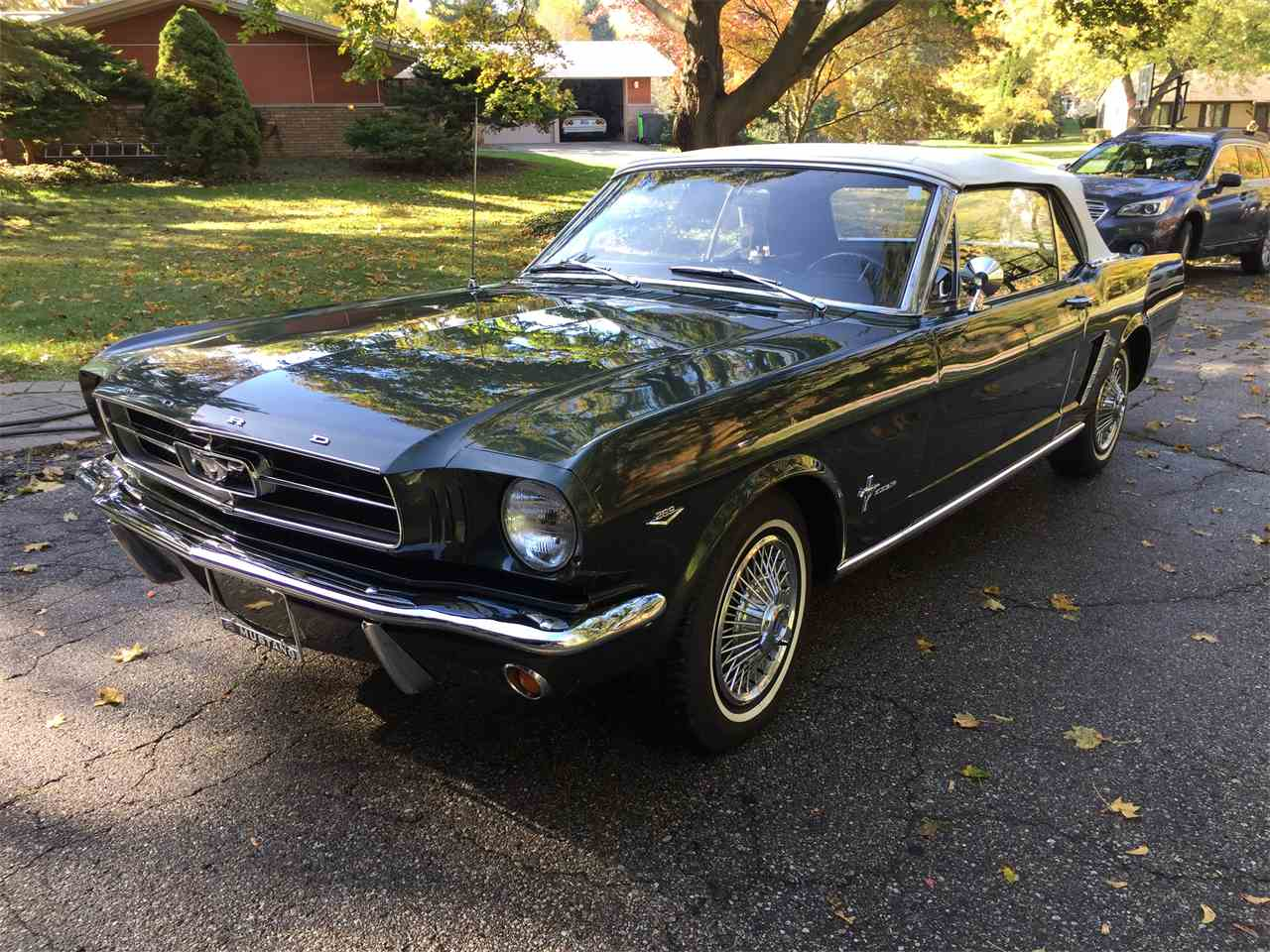 Large Picture of '65 Mustang - MGFZ