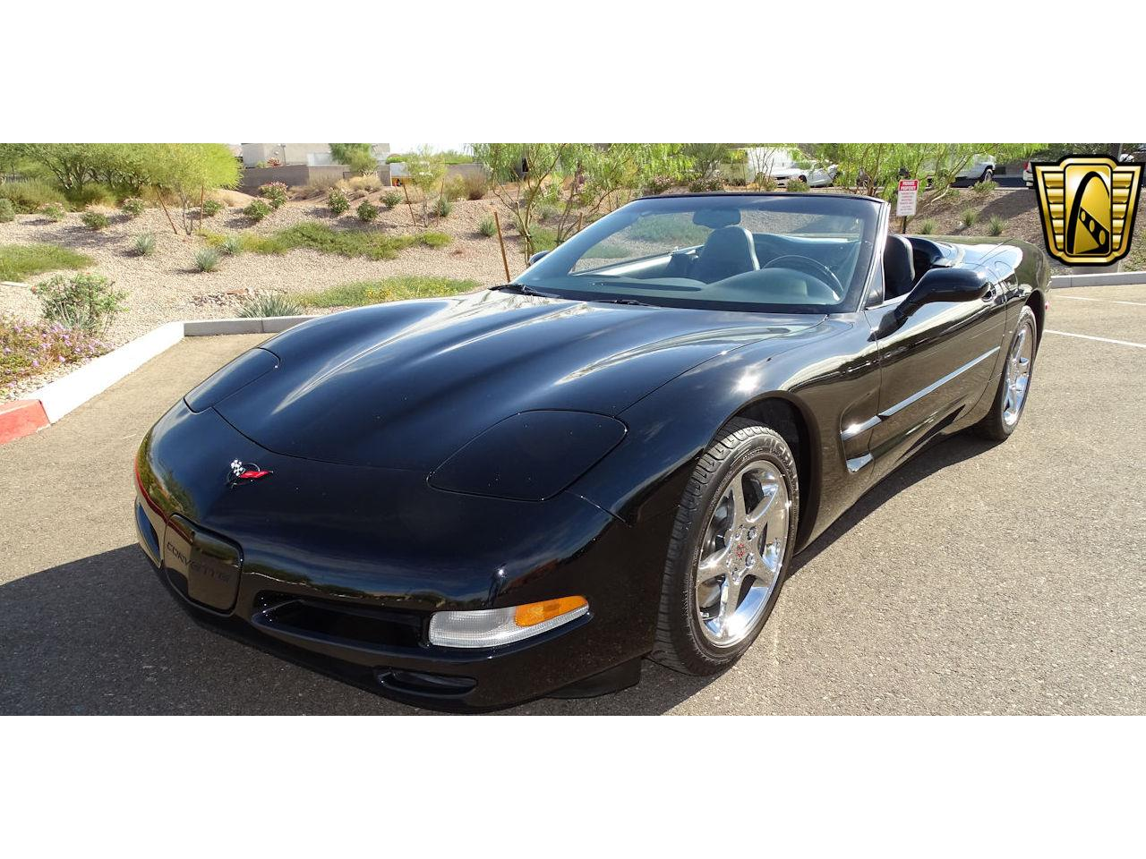 Large Picture of '02 Corvette - MGHB