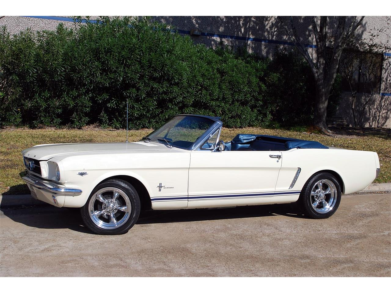 Large Picture of '65 Mustang - MGNG
