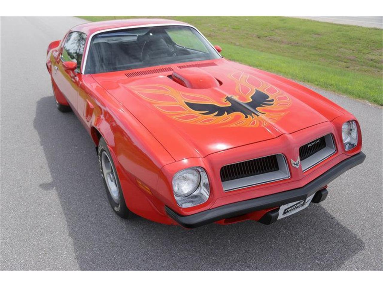 Large Picture of '74 Firebird Trans Am - MHC5