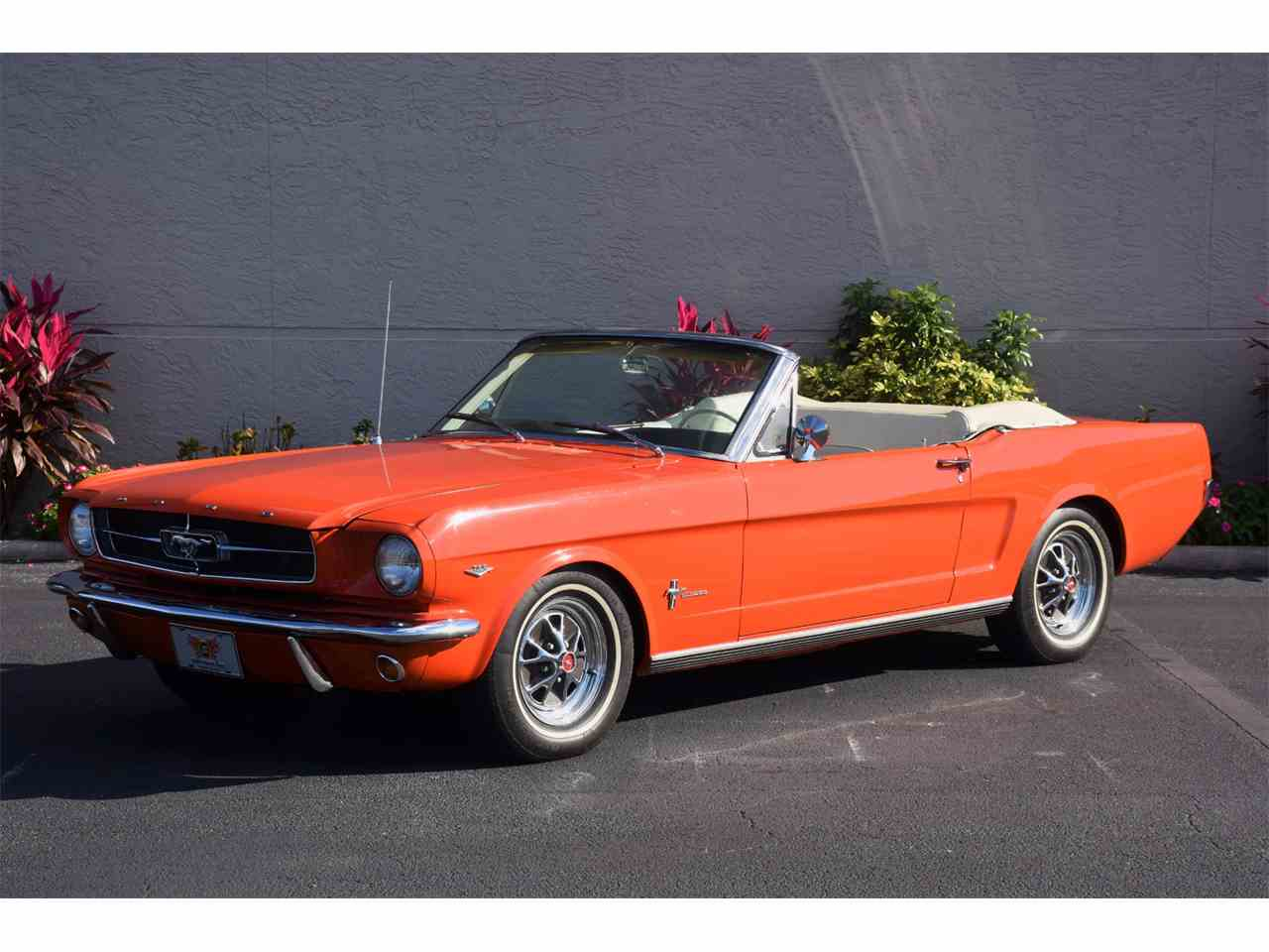 1965 Ford Mustang for Sale | ClassicCars.com | CC-1049491