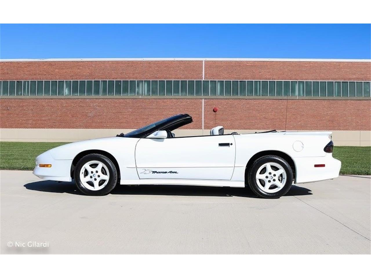 Large Picture of '94 Firebird Trans Am - MHV5